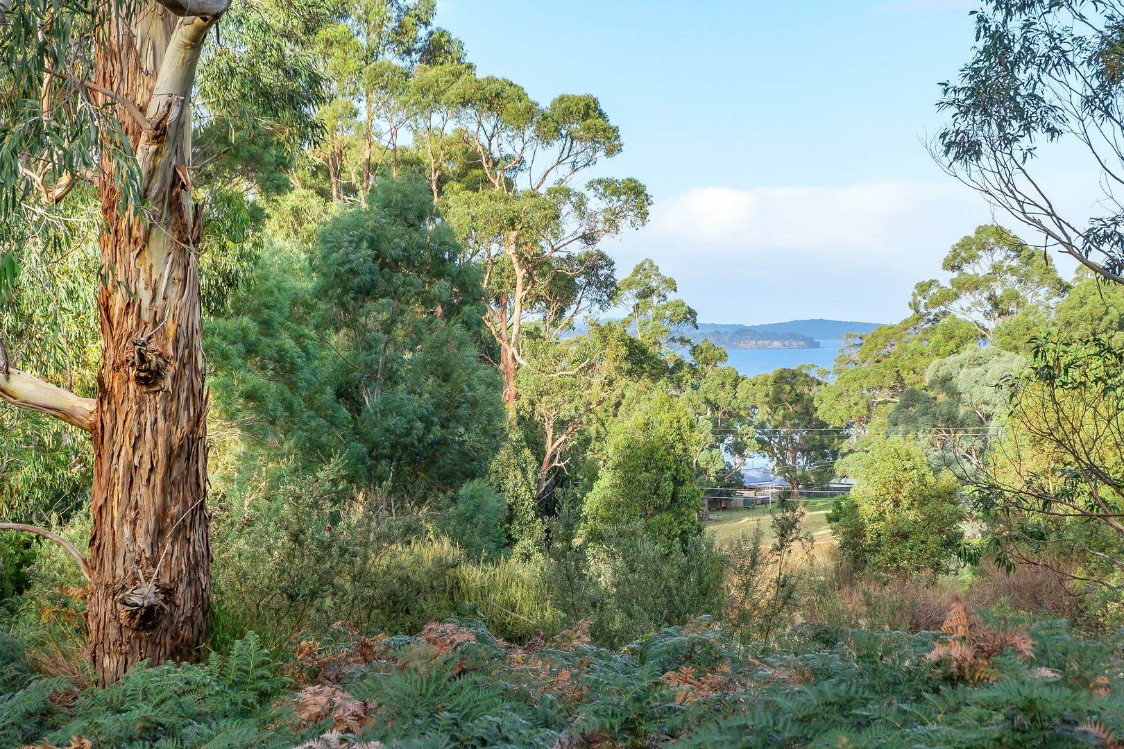 Lot 3 Amelia Street, Gordon TAS 7150, Image 1