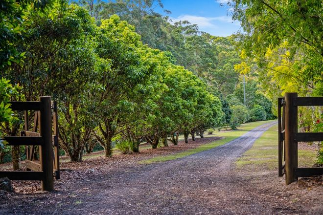 Picture of 21 Wilson Road, ILKLEY QLD 4554