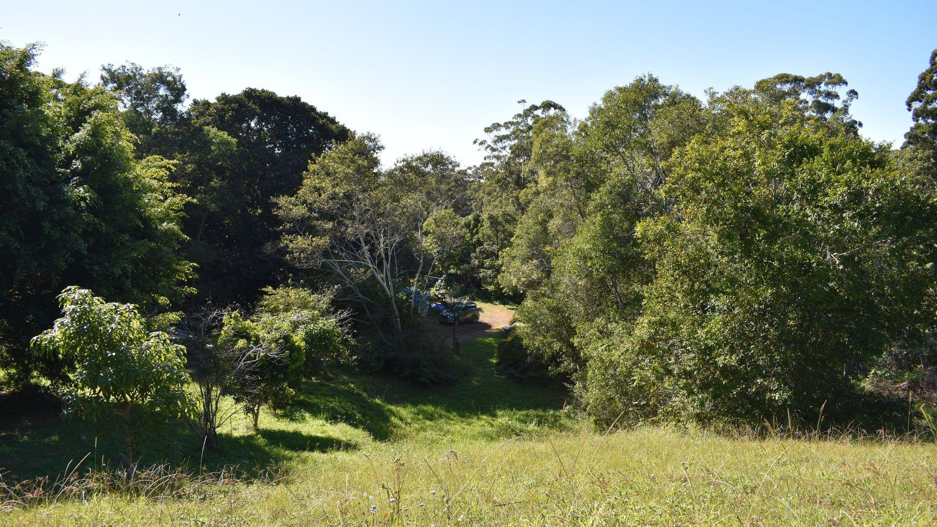 11 Melaleuca Place, Way Way NSW 2447, Image 1