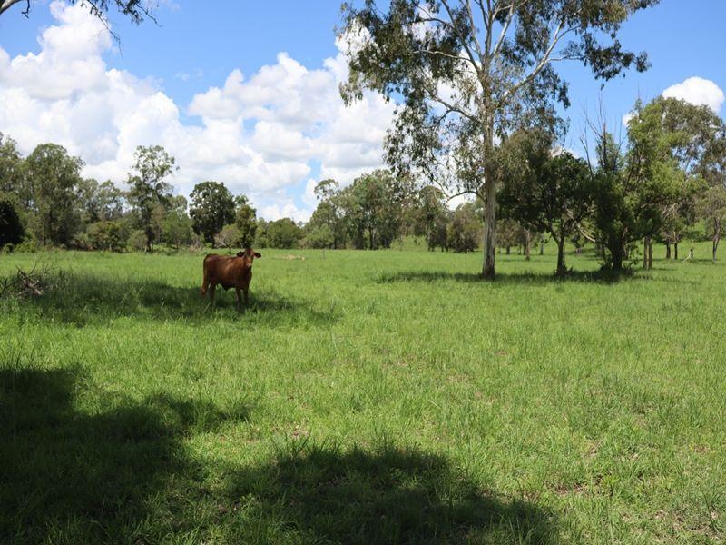 66 Bill James Road, Chatsworth QLD 4570, Image 2