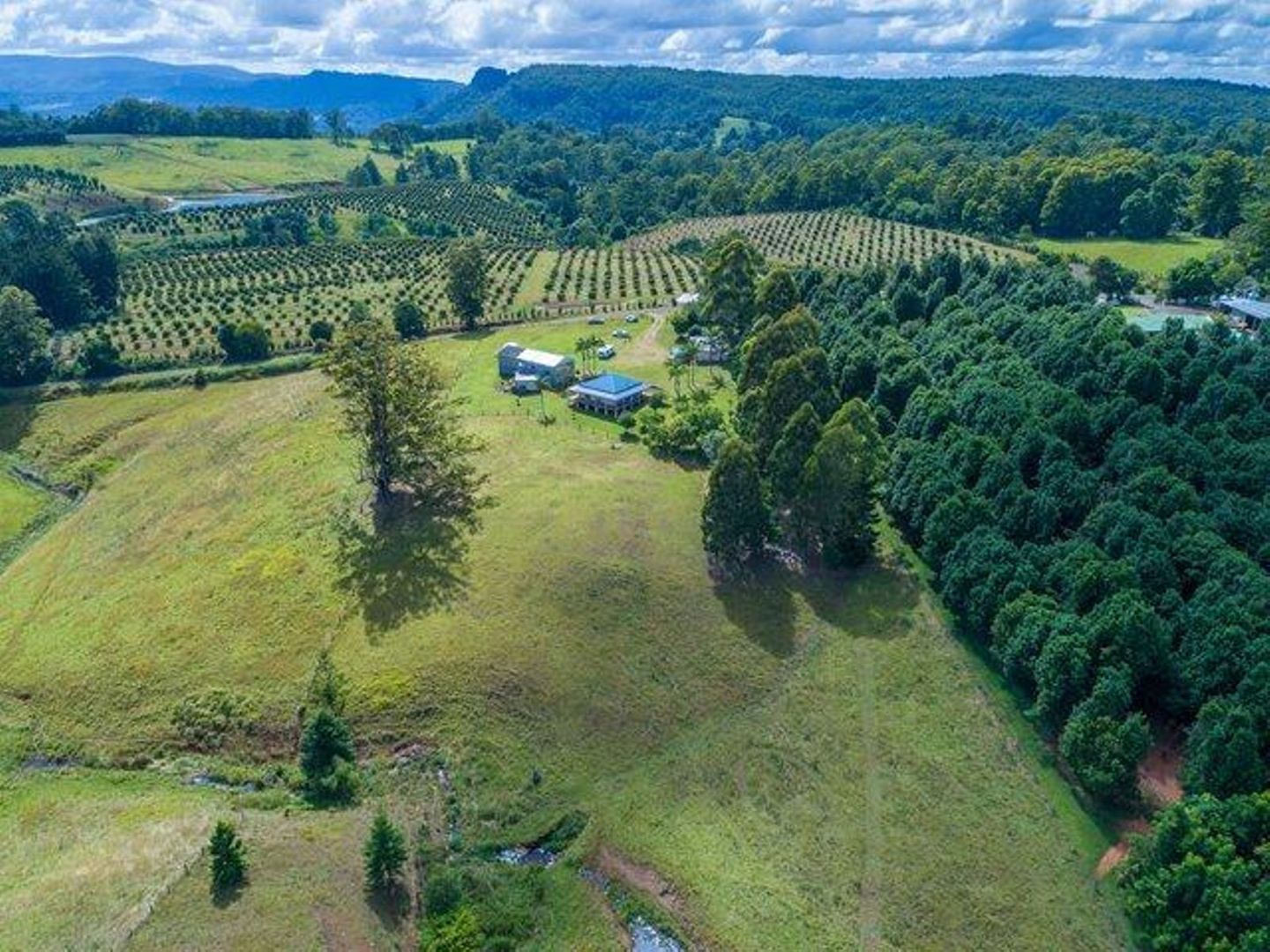 585 Mountain Top Road, Mountain Top NSW 2480, Image 2