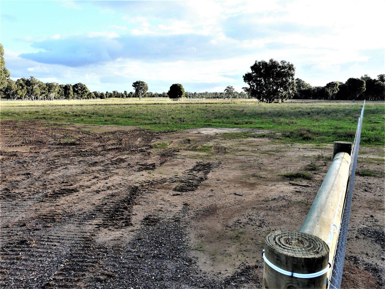 41 Morris Drive, Tocumwal NSW 2714, Image 2