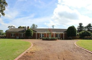 Picture of 2 Little Street, Scone NSW 2337