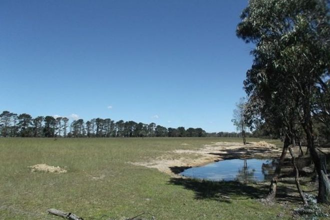 Picture of Lot 1 Cosmo Lane, THULIMBAH QLD 4376