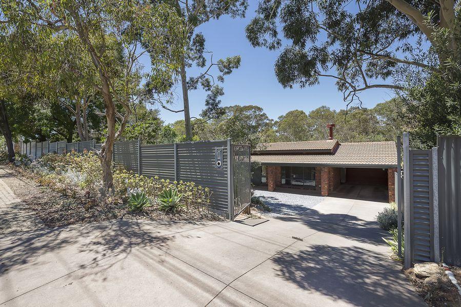 289 Hancock Road, Banksia Park SA 5091, Image 1