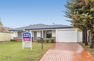 Picture of 8 Pallarup Grove, Waikiki WA 6169