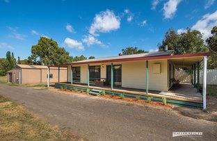 Picture of 38A Panmure Street, Newstead VIC 3462