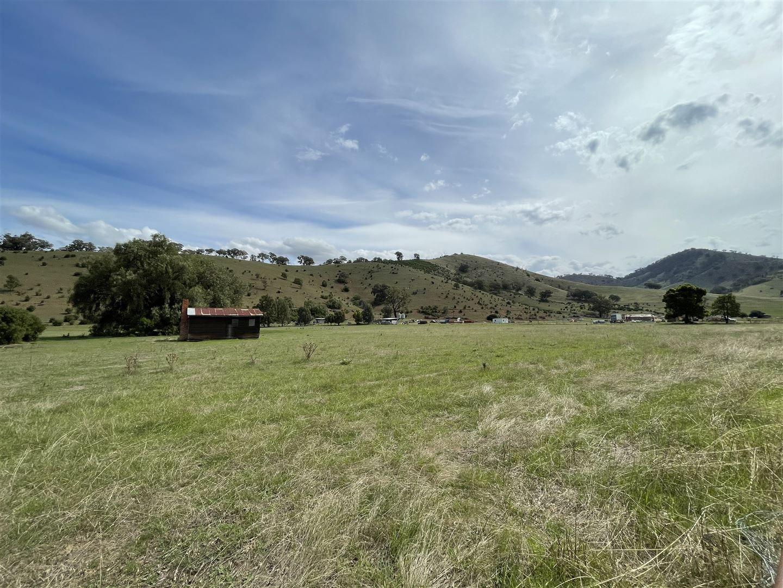 6965 Great Alpine Road, Swifts Creek VIC 3896, Image 1