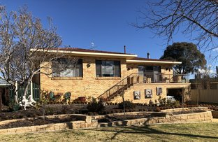 Picture of 25 Lindsay, Glen Innes NSW 2370