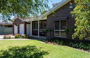 Picture of 13 Myall Crescent, Lake Albert NSW 2650