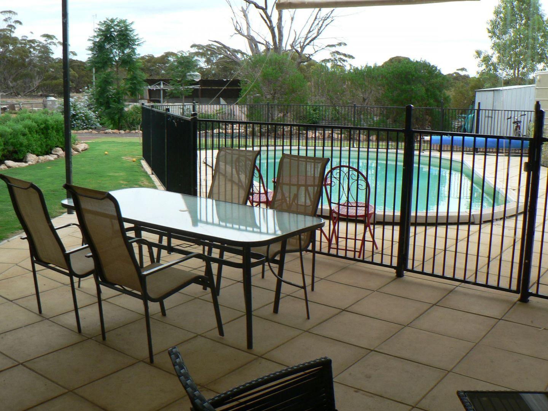 12 Railway Terrace, Kyancutta SA 5651, Image 2