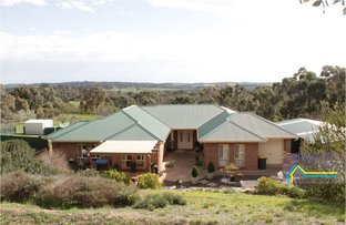 Picture of 7 Allenby Court, Clare SA 5453