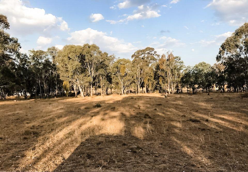 21 Railway Terrace, Crows Nest QLD 4355, Image 0