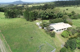 Picture of 37 East Evelyn Road, Millaa Millaa QLD 4886