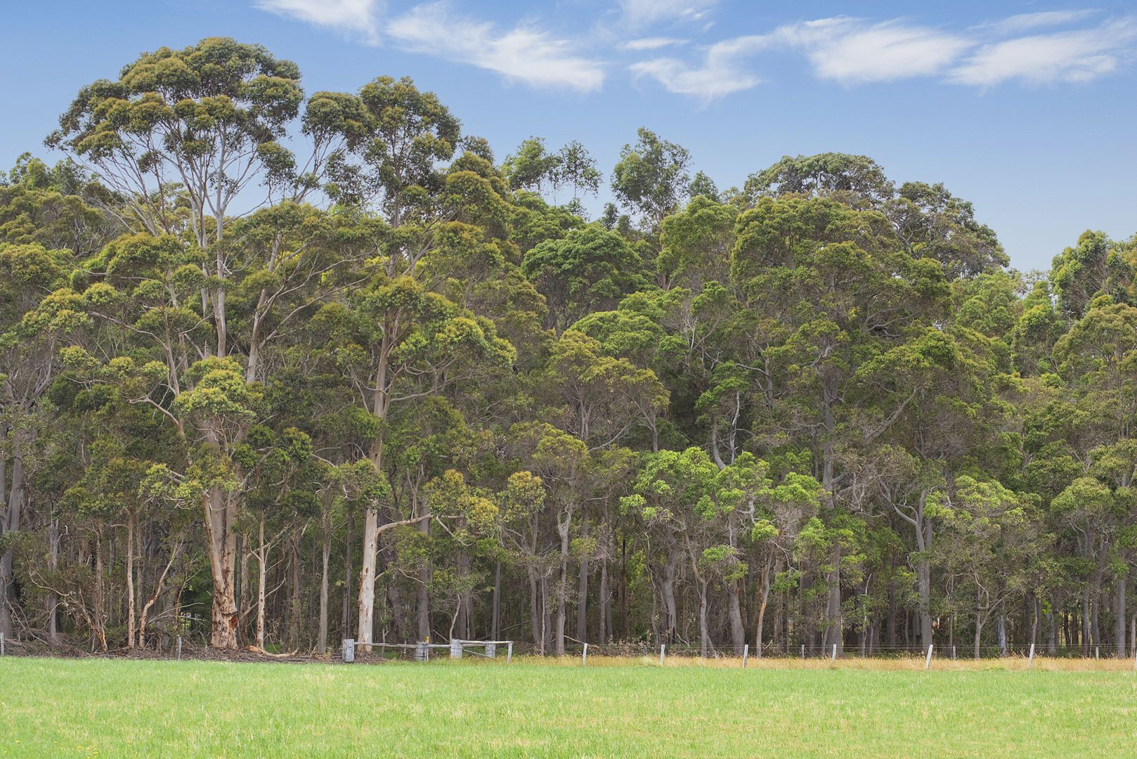 Lot 9000 Bussell Highway, Margaret River WA 6285, Image 0