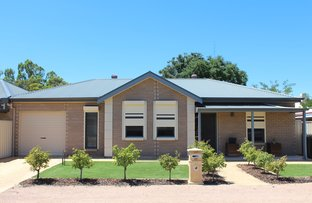Picture of 25 South Street, Port Pirie SA 5540