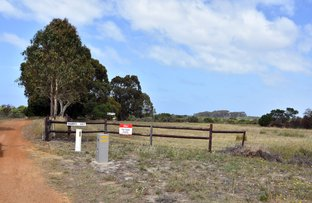 Picture of 667 (Lot 672) South Coast Hwy, Monjingup WA 6450