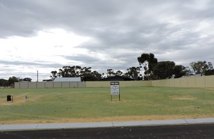 Picture of Carnaby Place, Moora WA 6510