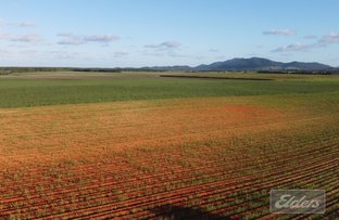 Picture of 0 Formosa Road, Silkwood QLD 4856