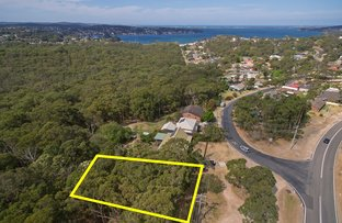 87 Donnelly Road, Arcadia Vale NSW 2283