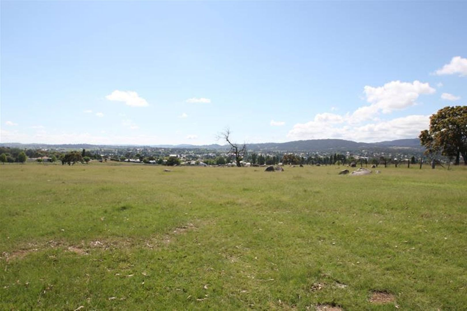 80 Sunnyside Loop Road, Tenterfield NSW 2372, Image 0