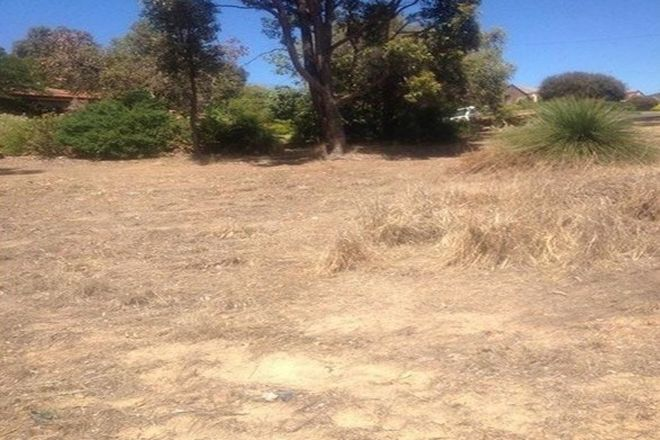 Picture of 14 Reid Place, BOYUP BROOK WA 6244