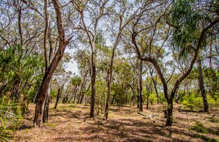 Picture of Lot 31 Bloodwood ave, Agnes Water QLD 4677