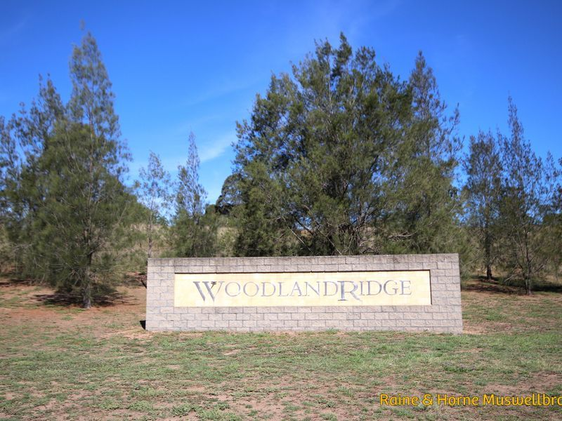 Lot 215 Kingfisher Court, Muswellbrook NSW 2333, Image 1
