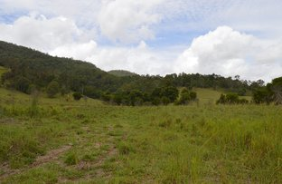 Picture of Lot 2 Maleny-Kenilworth Road, Maleny QLD 4552