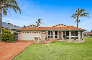 Picture of 8 Catalina Drive, Wilsonton QLD 4350
