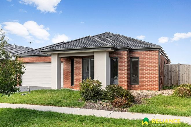 Picture of 51 Dingo Street, POINT COOK VIC 3030