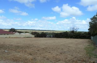 Picture of 30 And 32 Clinton Road, Maitland SA 5573