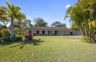 Picture of 11 Wilga Place, Coffs Harbour NSW 2450
