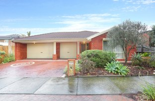 Picture of 3 Zena Drive, South Morang VIC 3752