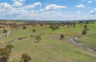 Picture of 13520 Thunderbolts Way, Walcha NSW 2354