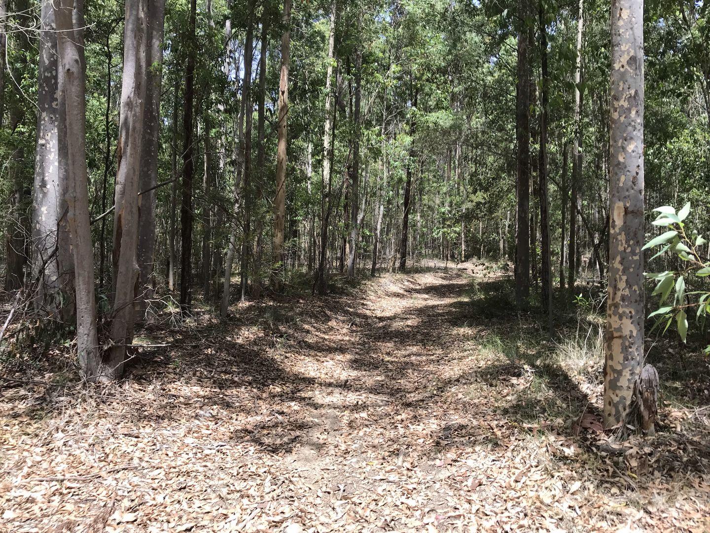 36,152, 154 DP755965 off Jervis Bay Road, Falls Creek NSW 2540, Image 0