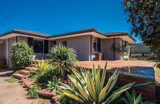 Picture of 18 Thomas Avenue, Geraldton WA 6530