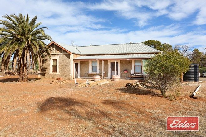 Picture of 94 Robertson Road, TOWITTA SA 5353