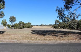 Picture of Lot 8 South Avenue, Bordertown SA 5268
