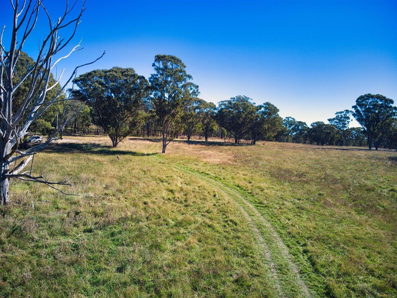 L2- 200 ha/3054 Nullo Mountain Road Nullo Mountain, Rylstone NSW 2849, Image 1