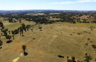 Picture of 220-244 Back Creek Road, Young NSW 2594