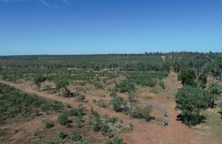 Picture of Lot 2 CAPRICORN HIGHWAY, Duaringa QLD 4712