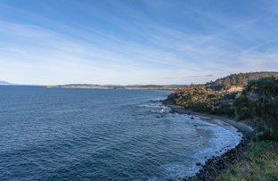 1/11901A Tasman Highway, Rocky Hills TAS 7190