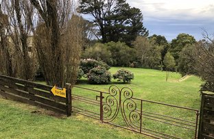 40 Old Main Road, Beech Forest VIC 3237