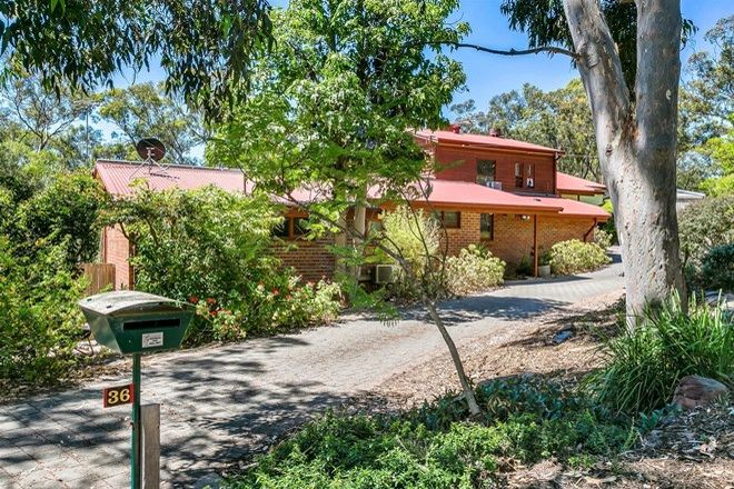 Picture of 36 Wilpena Street, EDEN HILLS SA 5050
