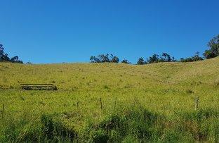 Picture of Lot 599 Sunnyside Road, Ravenshoe QLD 4888