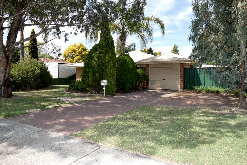 38 Golden Crescent, High Wycombe WA 6057, Image 0
