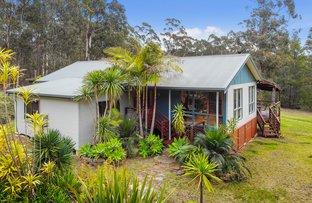 Picture of 59 Kiaka Road, Nethercote NSW 2549