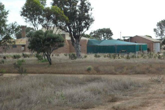 Picture of 272 Coorabie Road, COORABIE SA 5690