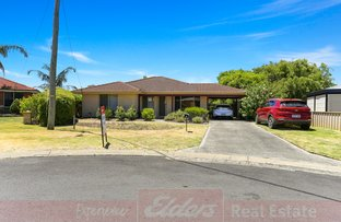 Picture of 8 Ibis Court, Capel WA 6271